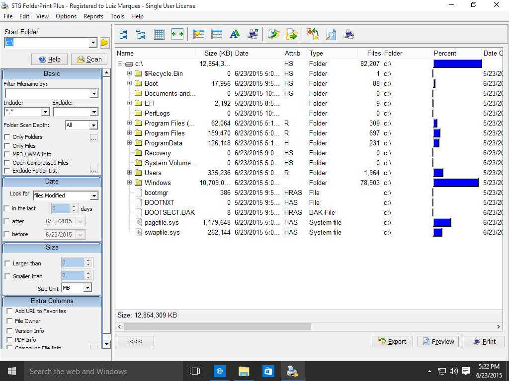 STG FolderPrint Plus running on Windows 10